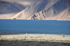 ladakh-tour-package-65
