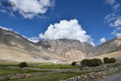 ladakh-tour-package-79