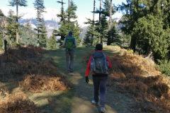 Manali-Day-Hike-Trek-16