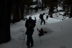 Manali-Day-Hike-Trek-24